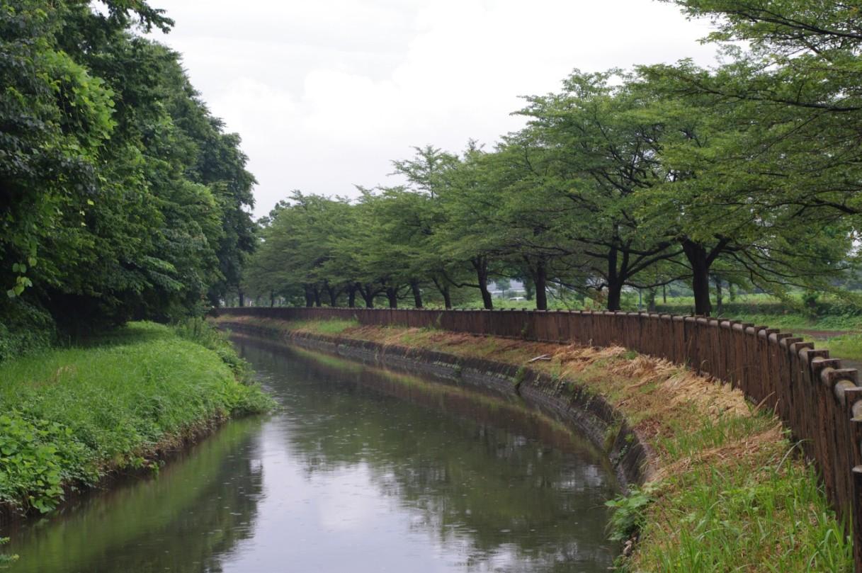 資料展示 埼玉県・さいたま市共同企画資料展自慢したい風景ベスト10のご案内